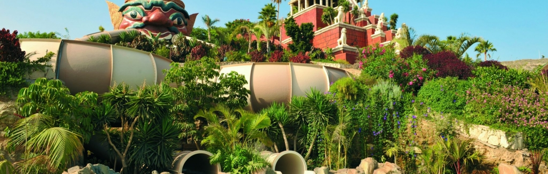 Image for Success and Sustainability at Siam Park
